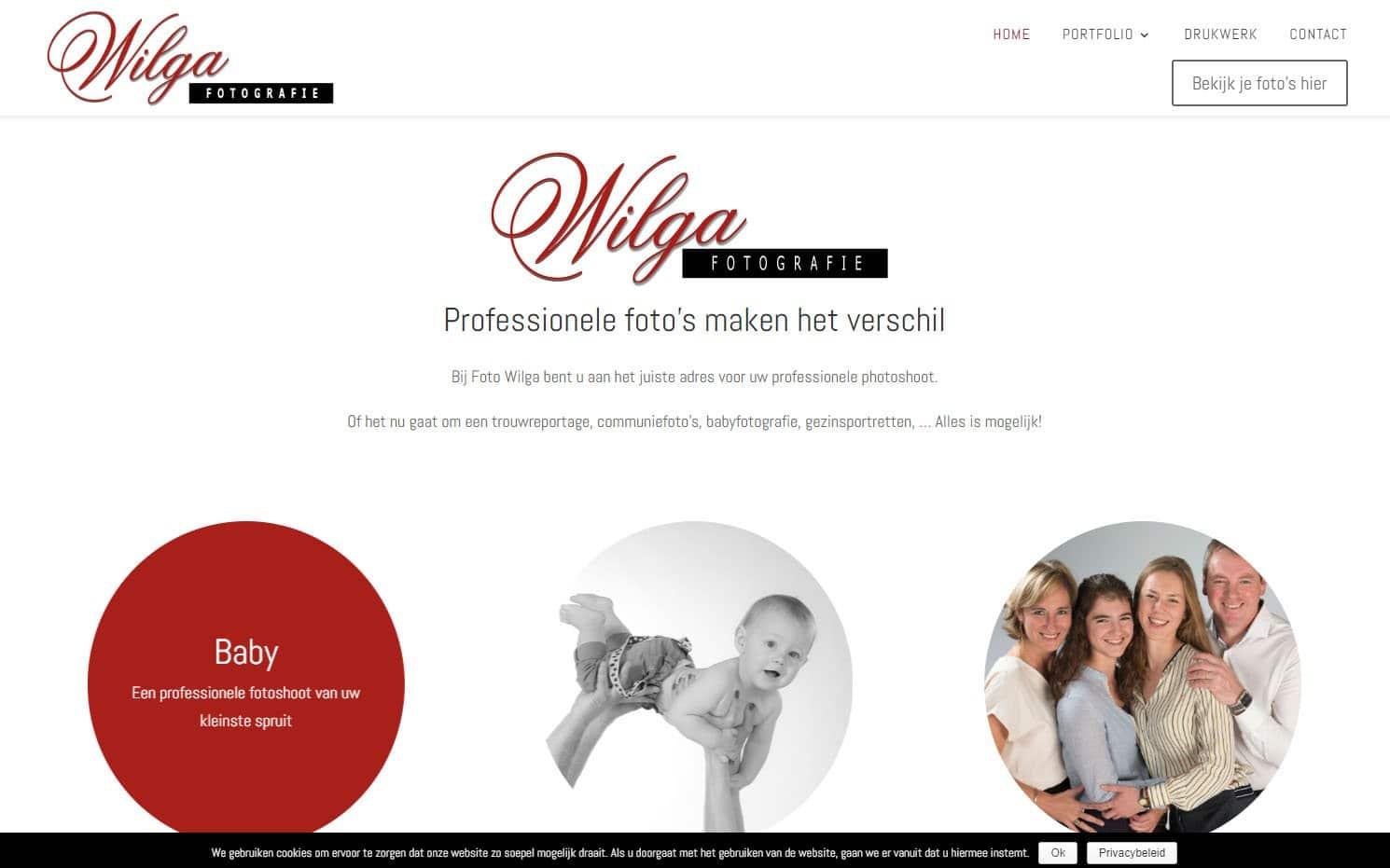 foto-wilga2